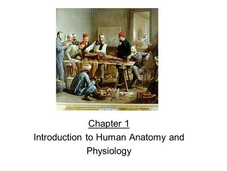 Chapter 1 Introduction to Human Anatomy and Physiology.