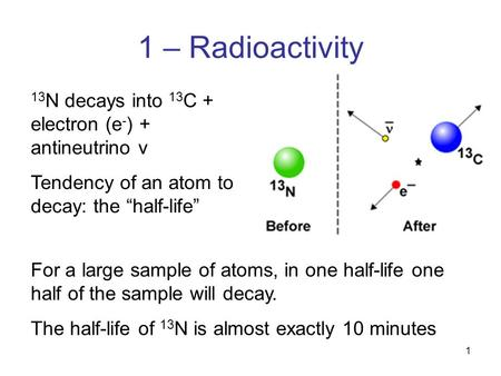 "1 1 – Radioactivity 13 N decays into 13 C + electron (e - ) + antineutrino v Tendency of an atom to decay: the ""half-life"" For a large sample of atoms,"