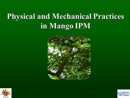Physical and Mechanical Practices in Mango IPM Next End.