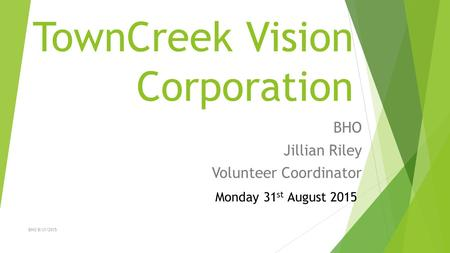 TownCreek Vision Corporation BHO Jillian Riley Volunteer Coordinator Monday 31 st August 2015 BHO 8/31/2015.