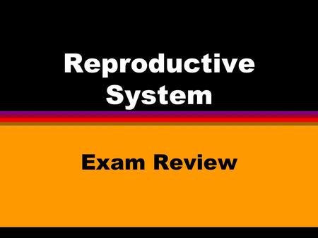 Reproductive System Exam Review Number 1 l The female reproductive cell is the _____ ______.