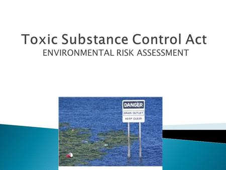 ENVIRONMENTAL RISK ASSESSMENT.  History of the Act ◦ The primary purpose of TSCA is to regulate chemical substances and mixtures  It does so by regulating.