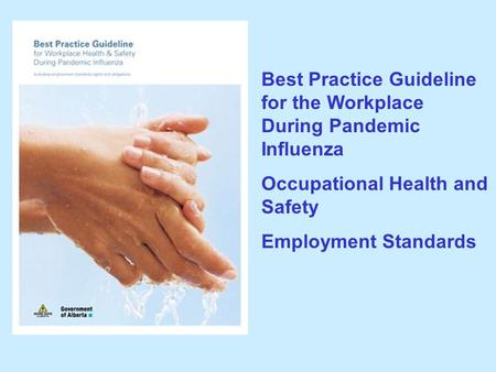 Best Practice Guideline for the Workplace During Pandemic Influenza Occupational Health and Safety Employment Standards.