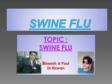 1.SWINE FLU ??? 2. HISTORY 3.TRANSMISSION 4. SYMPTOMS 5. TESTS 6. TREATMENT 7. PREVENTION AND VACCINES.