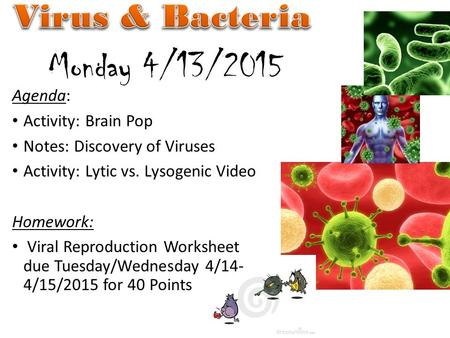 Agenda: Activity: Brain Pop Notes: Discovery of Viruses Activity: Lytic vs. Lysogenic Video Homework: Viral Reproduction Worksheet due Tuesday/Wednesday.