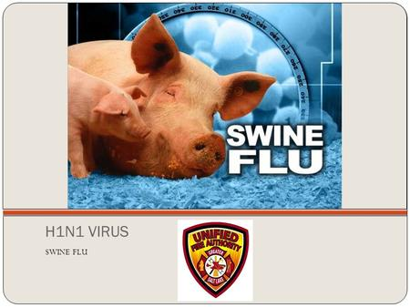H1N1 VIRUS SWINE FLU. What is the H1N1 Virus? It is a new virus that is spread from person to person first detected in people in the United States in.