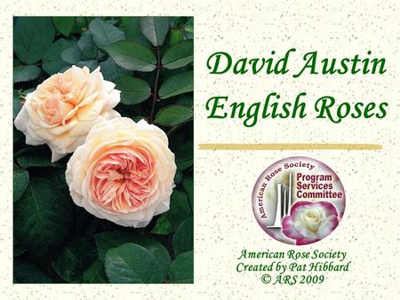 David Austin English Roses American Rose Society Created by Pat Hibbard © ARS 2009.
