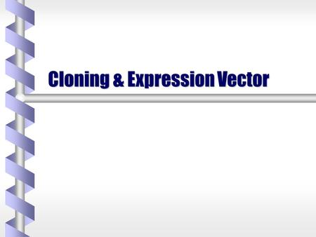Cloning & Expression Vector. b-b-b-b- The entire animal is produced from a single cell by asexual reproduction. This would allow for the creation of a.