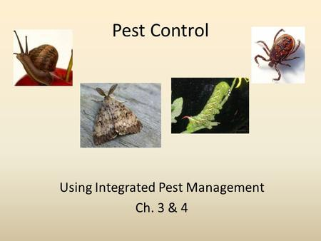 Pest Control Using Integrated Pest Management Ch. 3 & 4.
