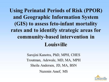 Using Perinatal Periods of Risk (PPOR) and Geographic Information System (GIS) to assess feto-infant mortality rates and to identify strategic areas for.