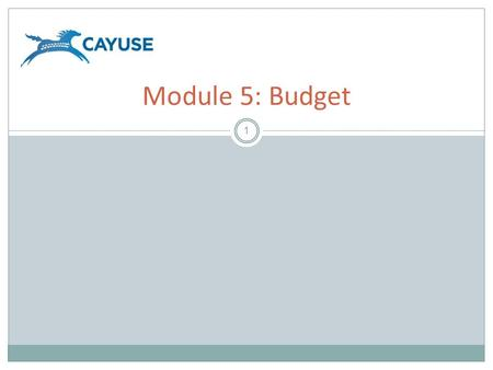 1 Module 5: Budget. Objectives 2 Welcome to the Cayuse424 Budget module. In this module you will learn: – Cayuse424 Basic Budget Concepts – How to use.