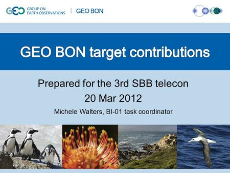 Prepared for the 3rd SBB telecon 20 Mar 2012 Michele Walters, BI-01 task coordinator.