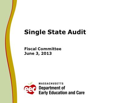 Single State Audit Fiscal Committee June 3, 2013.