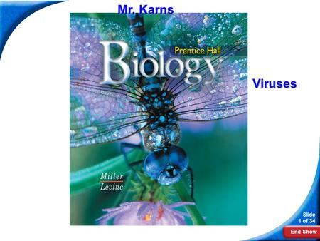 Mr. Karns Biology Viruses.
