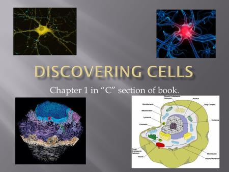 "Chapter 1 in ""C"" section of book..  Our living structure is determined by the amazing variety of ways in which cells are put together."