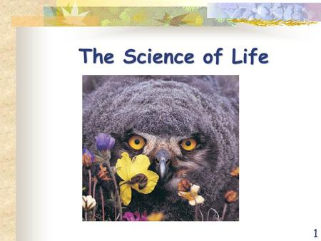 1 The Science of Life. 2 Biology – The Study of Life Life arose more than 3.5 billion years ago First organisms (living things) were single celled Only.