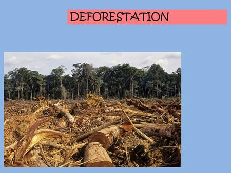 DEFORESTATION. Definition Cutting down and removal of trees in a forested area Lead to permanent destruction and eventual disappearance of rainforest.