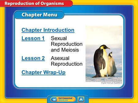 Chapter Menu Chapter Introduction Lesson 1Lesson 1Sexual Reproduction and Meiosis Lesson 2Lesson 2Asexual Reproduction Chapter Wrap-Up Digital Vision.