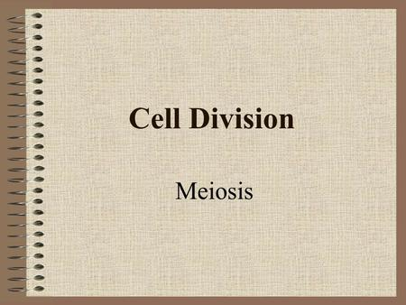 Cell Division Meiosis.