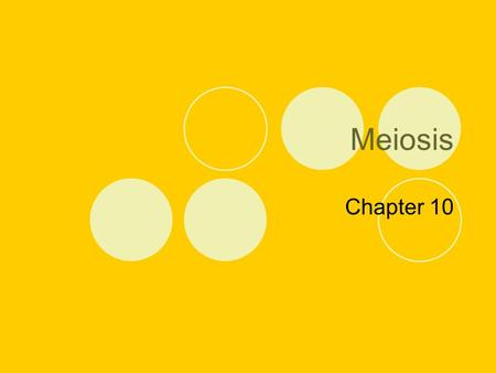 Meiosis Chapter 10.