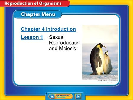 Chapter Menu Chapter 4 Introduction Lesson 1Lesson 1Sexual Reproduction and Meiosis Digital Vision Ltd./SuperStock.