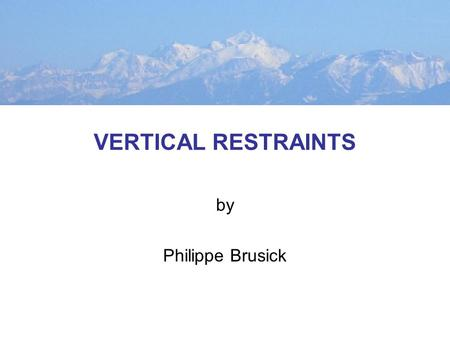 VERTICAL RESTRAINTS by Philippe Brusick. PRODUCTION-DISTRIBUTION CHAIN Firm A Suppliers Manufacturer A Wholesalers Retailers Firm B Suppliers Manufacturer.