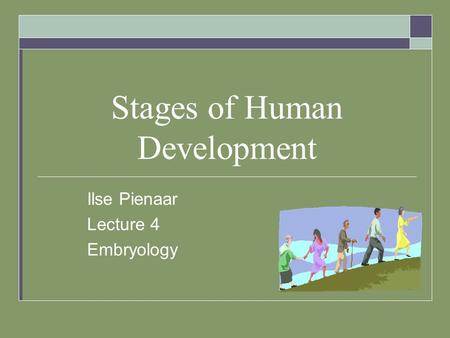Stages of Human Development Ilse Pienaar Lecture 4 Embryology.
