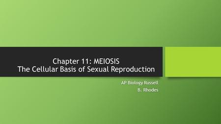Chapter 11: MEIOSIS The Cellular Basis of Sexual Reproduction AP Biology RussellAP Biology Russell B. RhodesB. Rhodes.