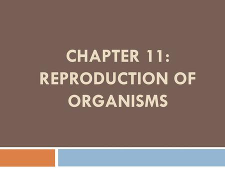 CHAPTER 11: REPRODUCTION OF ORGANISMS