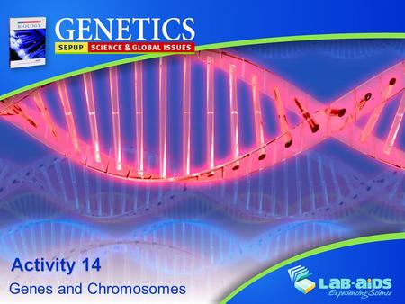 Genes and Chromosomes. Activity 14: Genes and Chromosomes LIMITED LICENSE TO MODIFY. These PowerPoint® slides may be modified only by teachers currently.