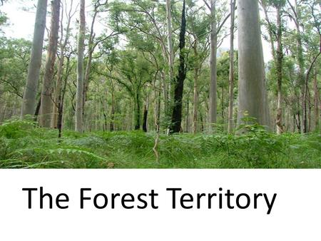 The Forest Territory. The Importance of Forests: 1.AN ENVIRONMENTAL TREASURE 2.A SPACE FOR LIVING AND RECREATION 3.AN ECONOMIC RESOURCE.