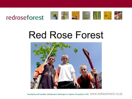 Red Rose Forest. The origins of Red Rose Forest One of 12 Community Forests across England Launched in 1992 as a Partnership of 6 Local Authorities and.