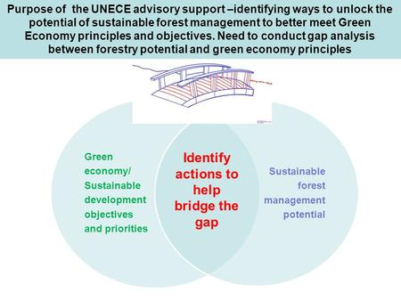 Purpose of the UNECE advisory support –identifying ways to unlock the potential of sustainable forest management to better meet Green Economy principles.