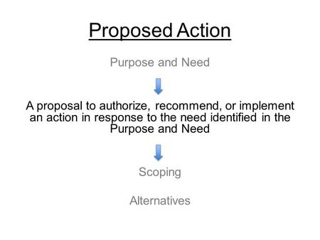 Proposed Action Purpose and Need A proposal to authorize, recommend, or implement an action in response to the need identified in the Purpose and Need.