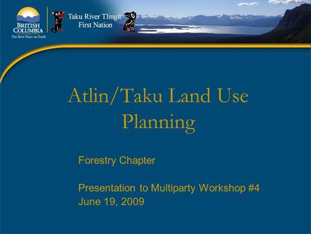 Atlin/Taku Land Use Planning Forestry Chapter Presentation to Multiparty Workshop #4 June 19, 2009.