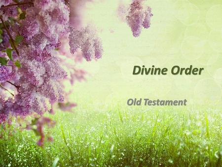 Divine Order Old Testament. 1 Corinthians 14:34 The women are to keep silent in the churches; for they are not permitted to speak, but are to subject.