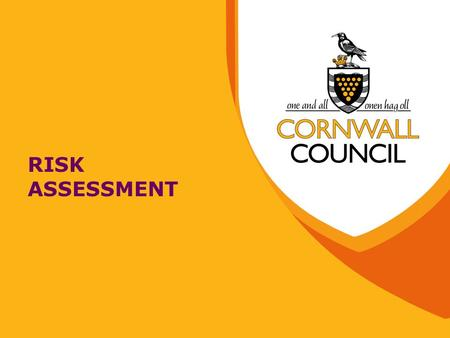 RISK ASSESSMENT. What is Risk Assessment? It is an examination of what we do, to determine the things that can cause harm to people It allows us to decide.