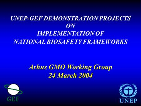 UNEP-GEF DEMONSTRATION PROJECTS ON IMPLEMENTATION OF NATIONAL BIOSAFETY FRAMEWORKS Arhus GMO Working Group 24 March 2004.