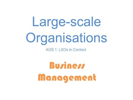 Large-scale Organisations Business Management AOS 1: LSOs in Context.