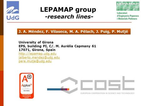 LEPAMAP group -research lines-