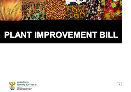 PLANT IMPROVEMENT BILL PLANT IMPROVEMENT BILL 1. CONTENT  ACRONYMS  INTRODUCTION  OBJECTIVES OF PLANT IMPROVEMENT BILL  SCHEMATIC OVERVIEW OF SCOPE.