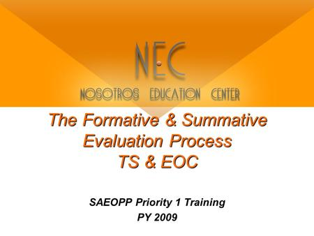 The Formative & Summative Evaluation Process TS & EOC SAEOPP Priority 1 Training PY 2009.