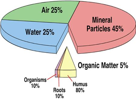Soil Chapter 8. Soil Characteristics Most soils contain four basic components: Organic matter Mineral particles Water Air.
