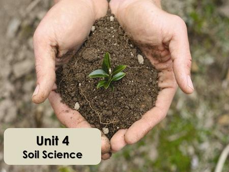 Unit 4 Soil Science. Importance of Soil What is soil? Holds water and nutrients for plants Natural filter Stores and recycles nutrients Fertile soil =
