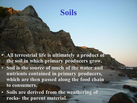 Soils All terrestrial life is ultimately a product of the soil in which primary producers grow.All terrestrial life is ultimately a product of the soil.
