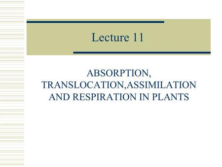 Lecture 11 ABSORPTION, TRANSLOCATION,ASSIMILATION AND RESPIRATION IN PLANTS.