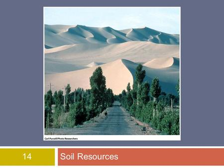 14Soil Resources. Overview of Chapter 14  The Soil System  Soil Properties and Major Soil Types  Environmental Problems Related to Soil  Soil Conservation.
