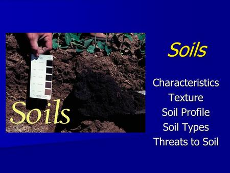 Soils CharacteristicsTexture Soil Profile Soil Types Threats to Soil.