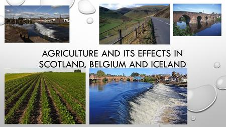 Agriculture and its effects in Scotland, Belgium and Iceland