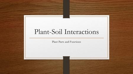 Plant-Soil Interactions Plant Parts and Functions.